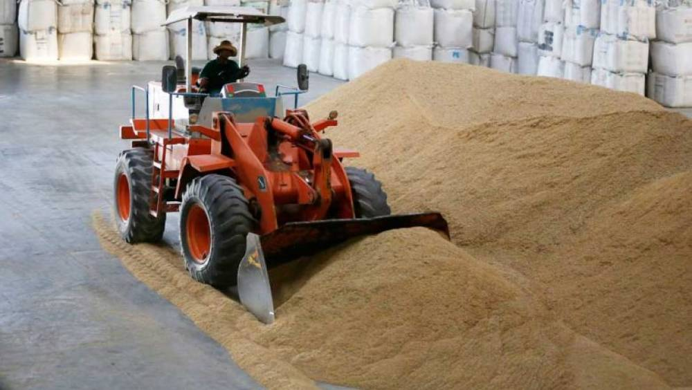 Rice sector revisits tactics as exports hit