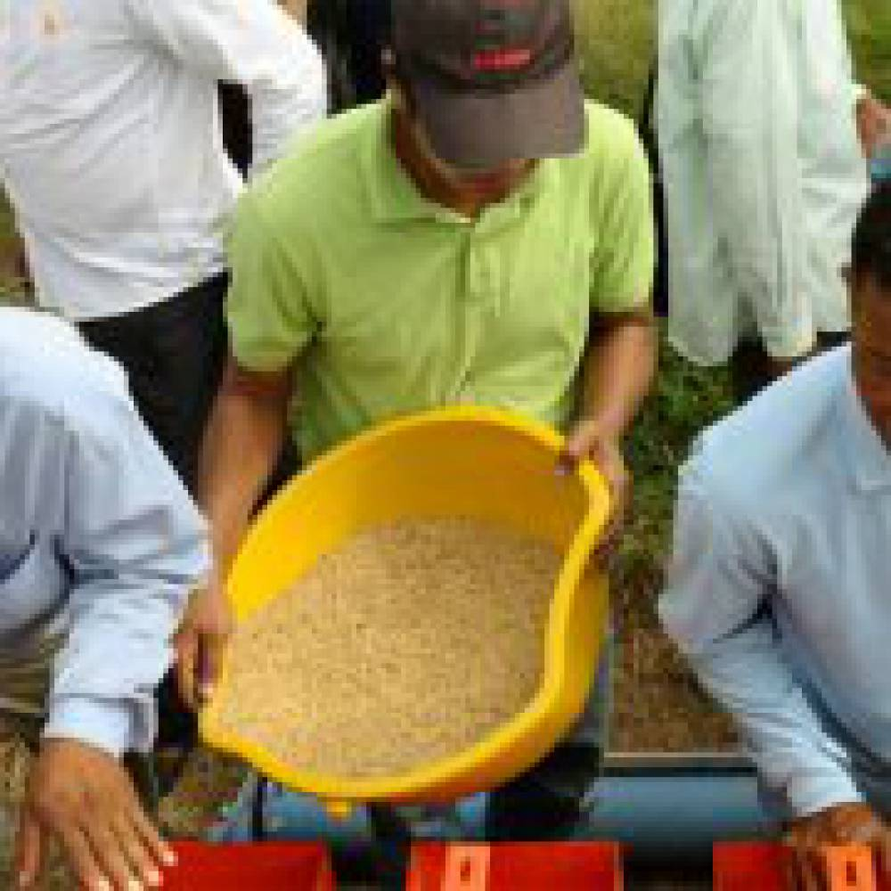 Mechanisation Boosts Yields and Efficiency in Cambodia
